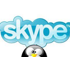 [guida] Ubuntu e derivate: installare Skype da riga di comando