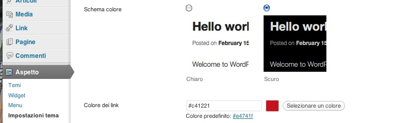 la sezione aspetto opzioni tema nel backend di wordpress