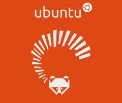 Ubuntu 13.04 Raring Ringtail