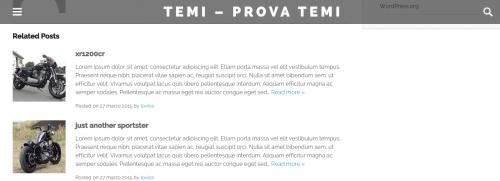 layout pagine intererne omg theme wordpress