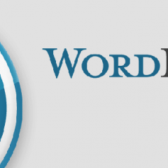 WORDPRESS due plugin per le featured image