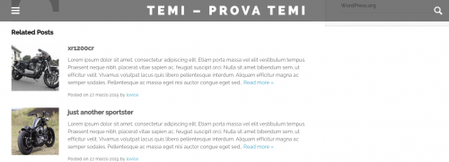 layout pagine intererne omg theme wordpress